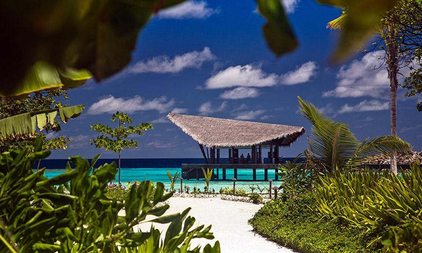 Explorando el océano y de relax en las Maldivas