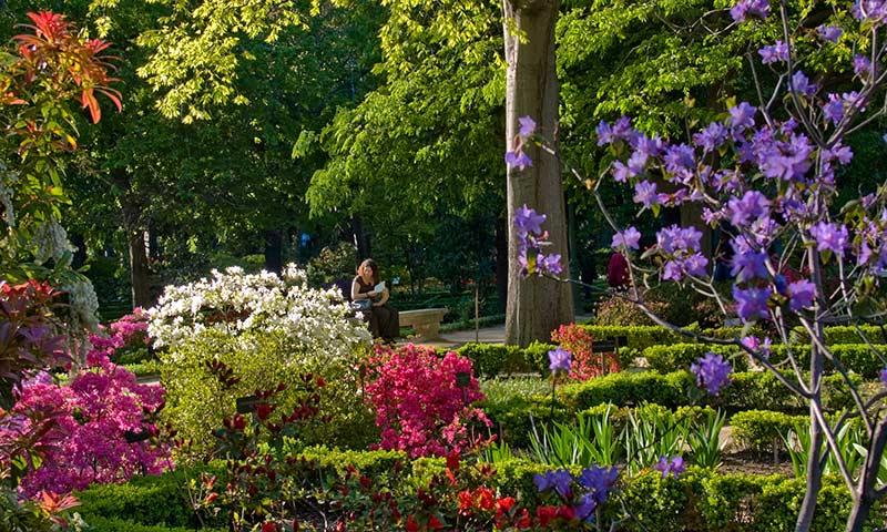 Planes y más planes para disfrutar de la primavera en Madrid