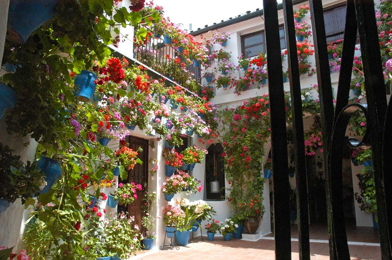 Córdoba retratada en 15 instantáneas, una ciudad para el mes de mayo