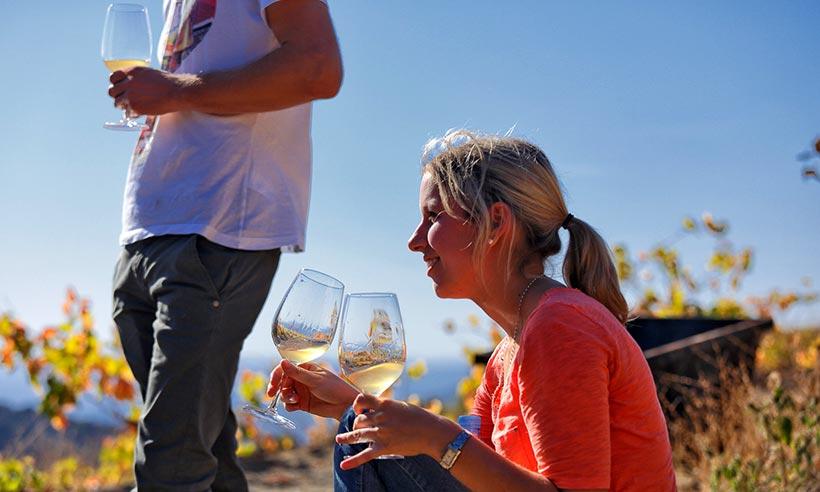 Celebra septiembre con una escapada entre los viñedos del Priorat