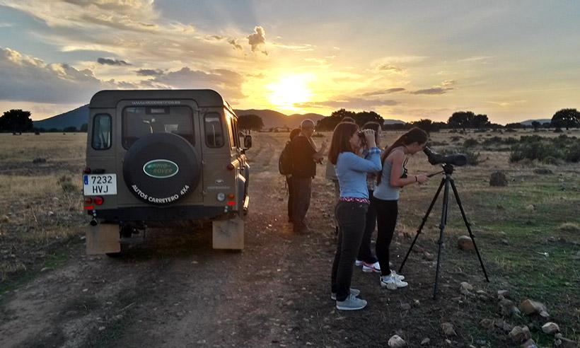 Con los niños por el Serengeti manchego