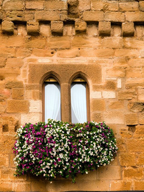 Laguardia-detalle-fachada