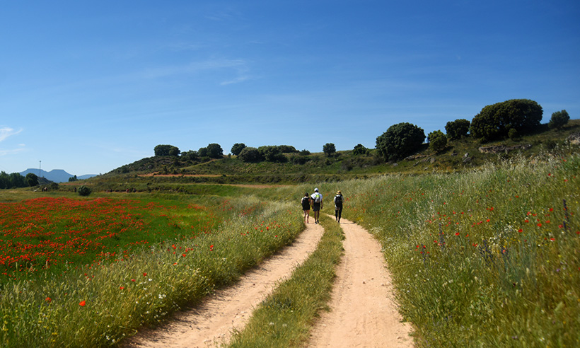 Viaje a La Alcarria, en versión siglo XXI