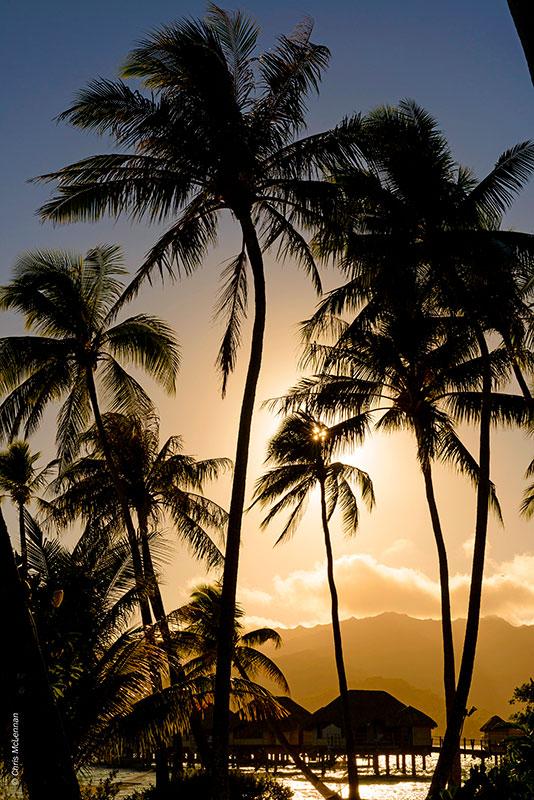 Tahiti_a