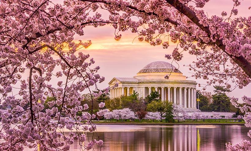 Destinos espectaculares para disfrutar esta nueva primavera