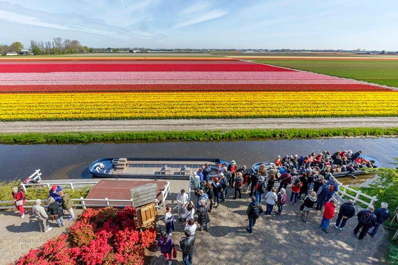 Keukenhof el jard n m s colorido de europa en primavera foto 6 - Jardines de tulipanes en holanda ...