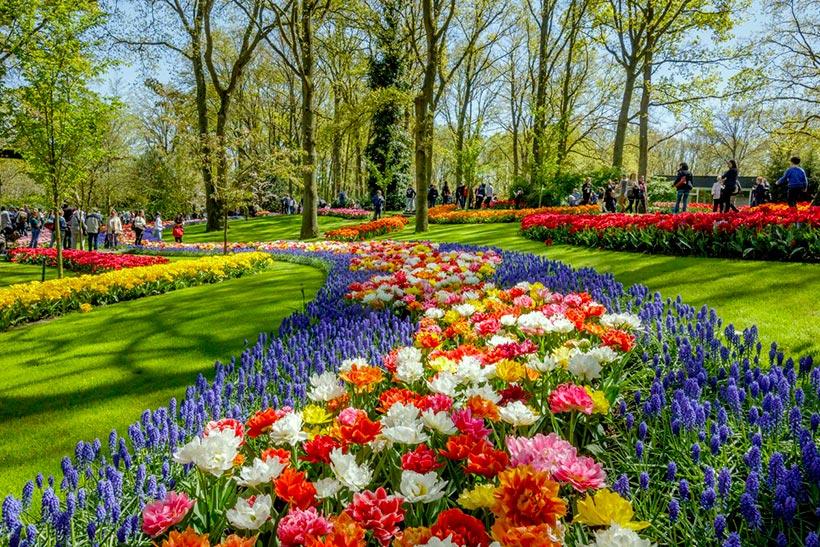 Keukenhof el jard n m s colorido de europa en primavera for Imagenes de jardines exoticos