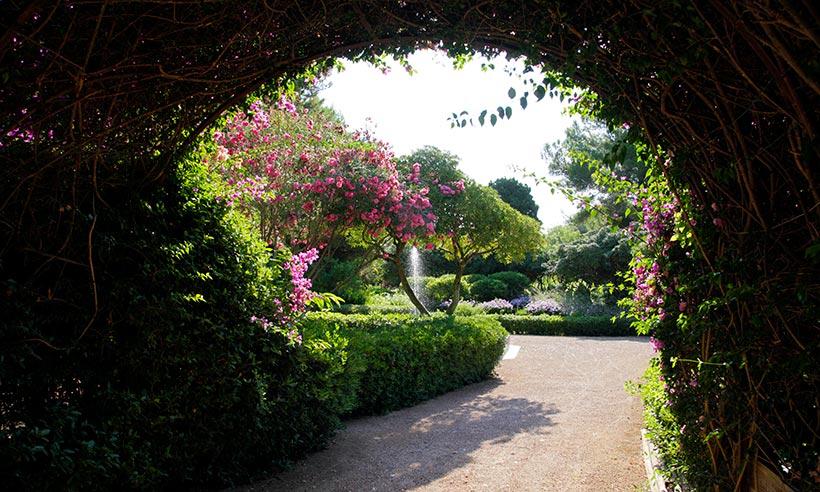 los jardines del palacio de marivent abiertos al paseo