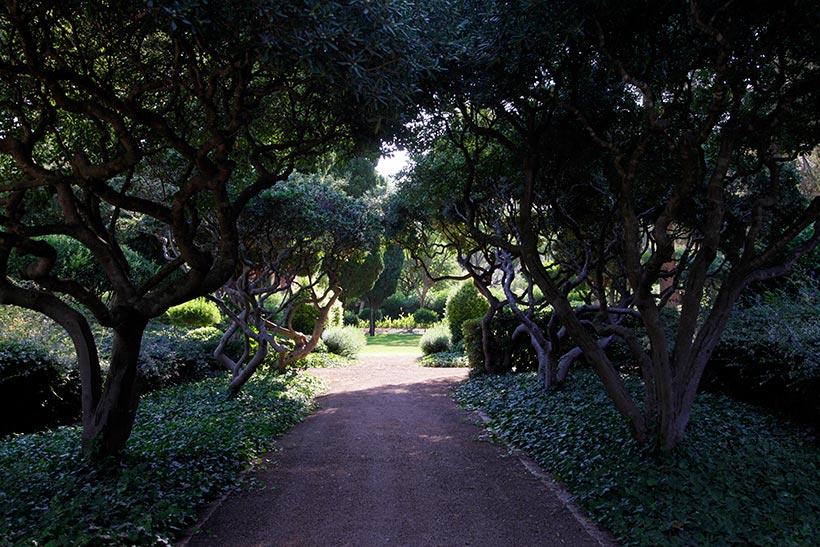 Los jardines del palacio de marivent abiertos al paseo for Jardines de marivent