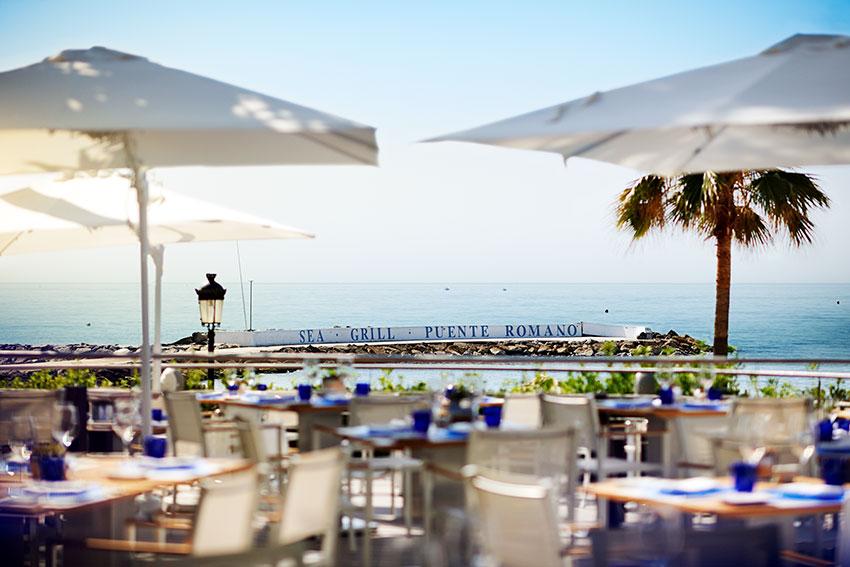Navidades bajo el sol en marbella - Sea grill marbella ...