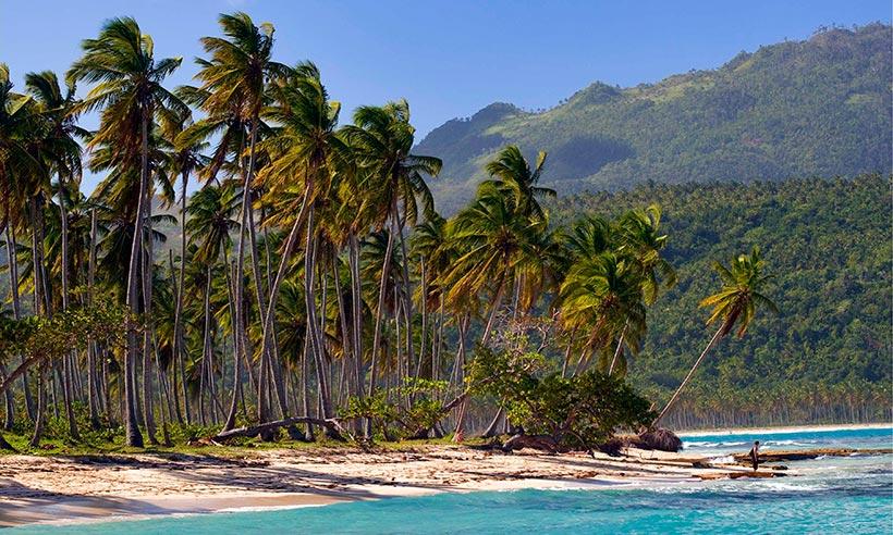 Samaná: playas de postal, cocoteros, sabor caribeño y… ¡ballenas!