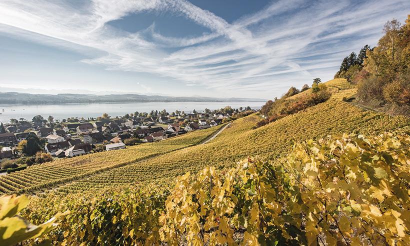 Friburgo en 8 experiencias (o cómo sacarle partido a esta región suiza)