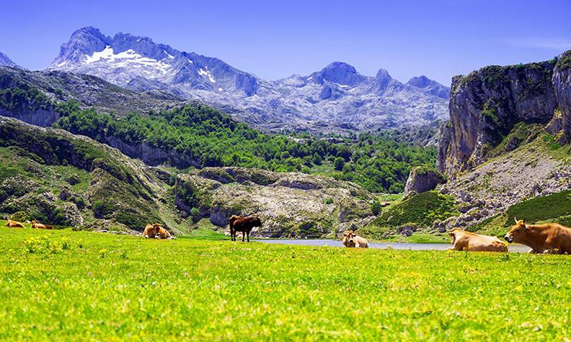 Covadonga, un destino ideal para escaparse a Asturias