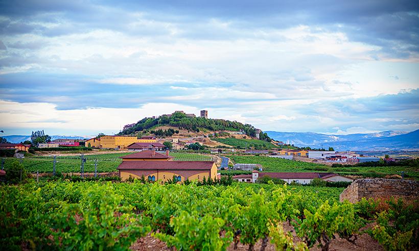Cinco experiencias que saben a vino para exprimir la Rioja Alavesa