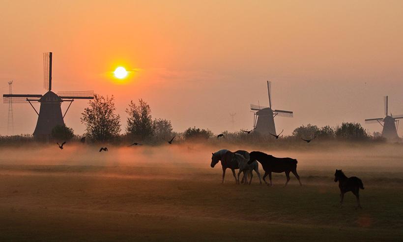 En bici hacia los molinos de Kinderdijk