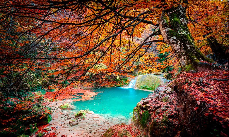 España en 12 bosques perfectos para el otoño