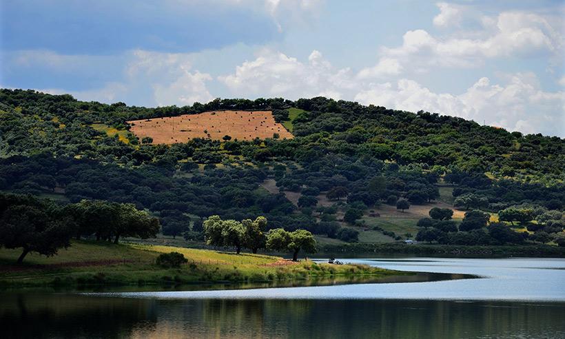 Jamón ibérico, vino y queso, tres rutas gastro para comerse Badajoz