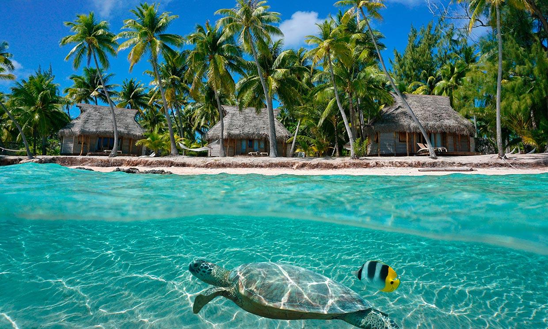 El archipiélago de las Tuamotu o el paraíso perdido de la Polinesia