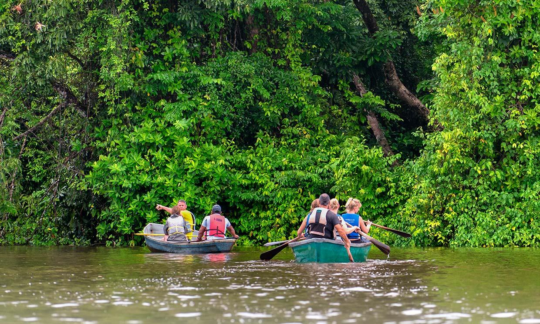 Tortuguero, el reino caribeño de las tortugas en Costa Rica