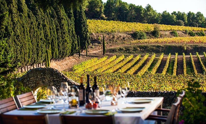 Ideas originales para disfrutar del mundo del vino cerca de Barcelona