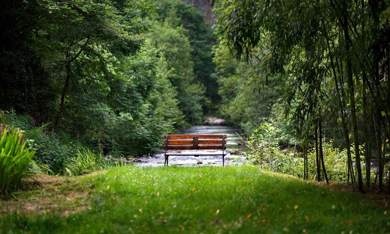 Alojamiento rural, naturaleza y Cantabria, una combinación que triunfa este verano