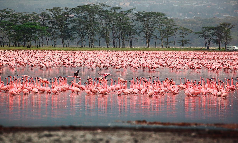 Maravillas naturales de África para, al menos, una vez en la vida