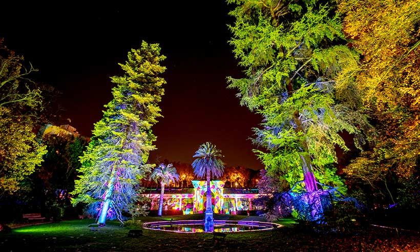 El Jardín Bótánico se enciende por Navidad con miles de luces