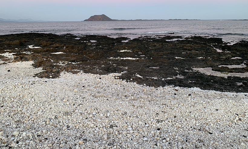 La instagrameable playa de las palomitas de Fuerteventura