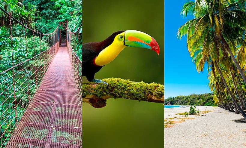 Sin PCR, paraíso sostenible y otros motivos para salir volando a Costa Rica