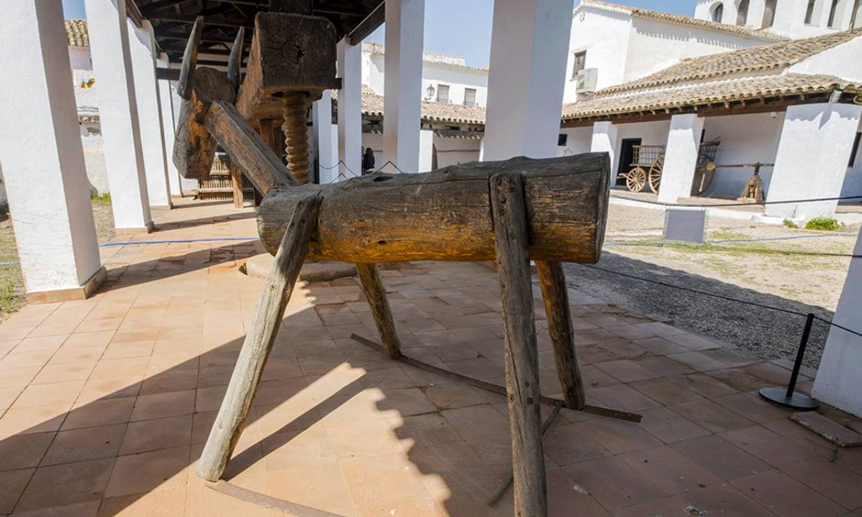 Celebrando a Cervantes en El Toboso, el pueblo de Dulcinea