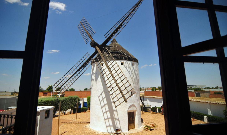 Madridejos, 24 horas entre olivos y azafrán