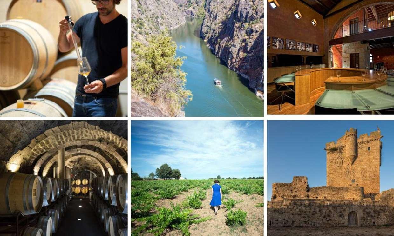 Bodegas de autor y otras sorpresas siguiendo al río más vinícola