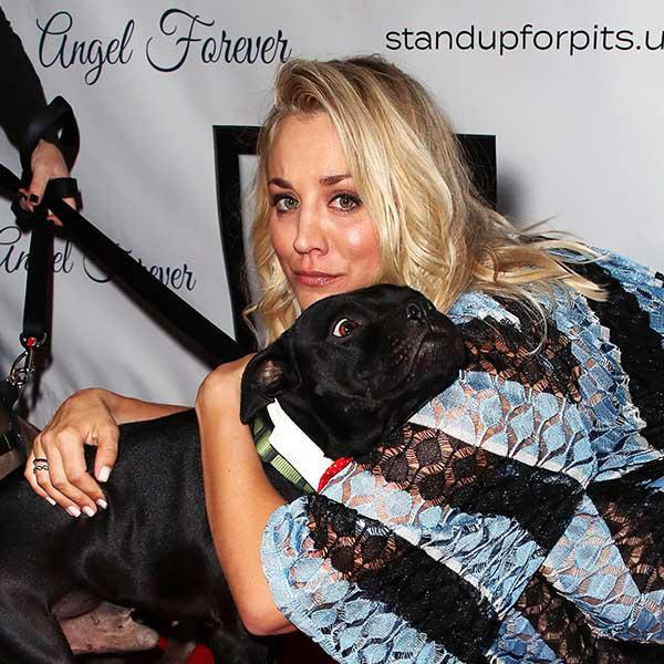 Kaley Cuoco, defender of pitbulls