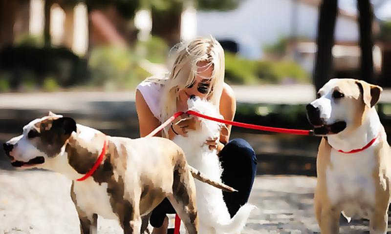 Kaley Cuoco's life changed when her pets came into her life