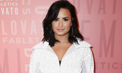 Demi Lovato introduces boyfriend Austin Wilson with shirtless pic