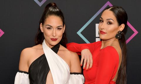 WWE stars the Bella Twins are pregnant