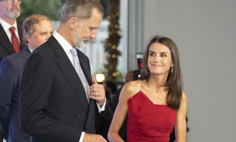 Queen Letizia stuns wearing a cocktail dress with a face mask