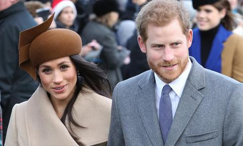 Meghan Markle and Prince Harry seen Christmas tree shopping
