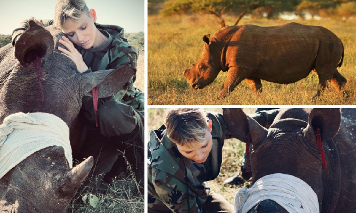 Inside Princess Charlene of Monaco's mission to Africa: Photos - Photo 1